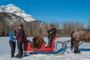 A private sleigh ride proposal is a truly exciting and memorable moment