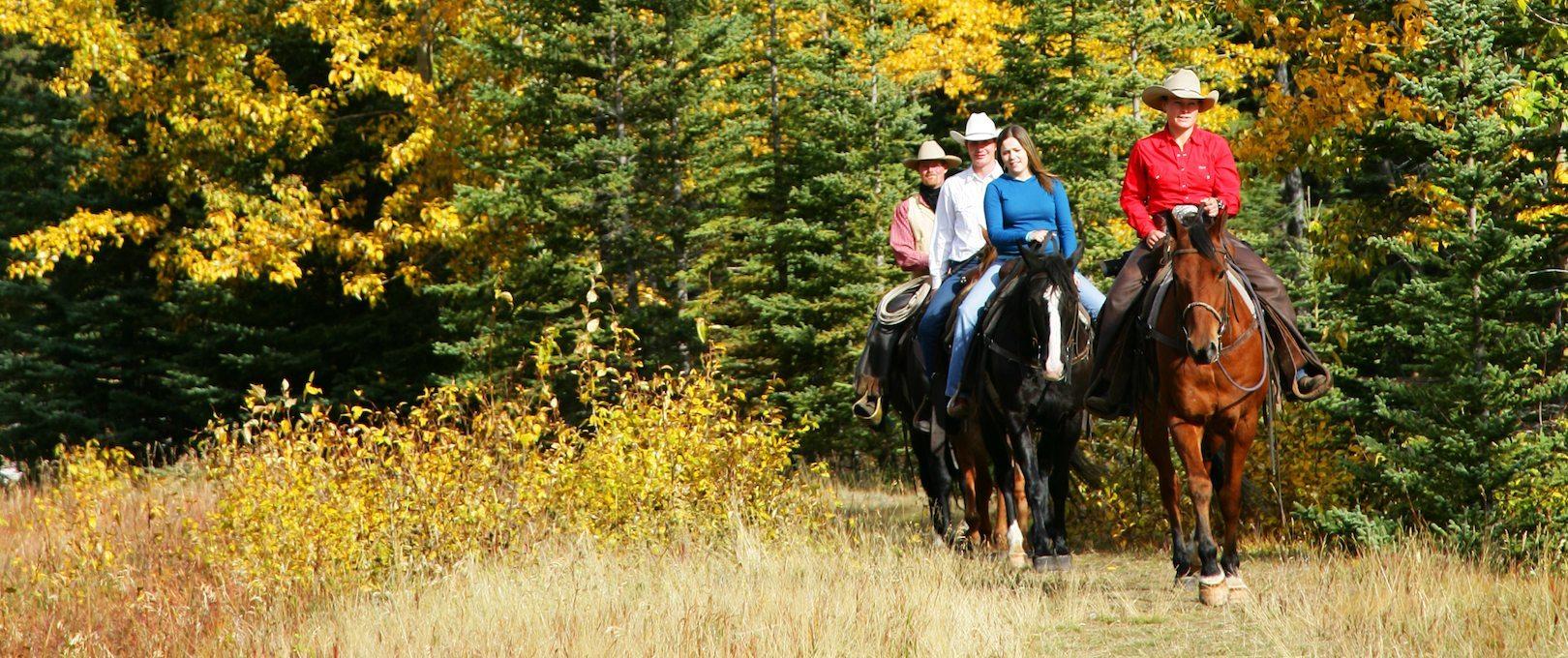 Horseback Ride – Sulphur Mtn 3 Hrs
