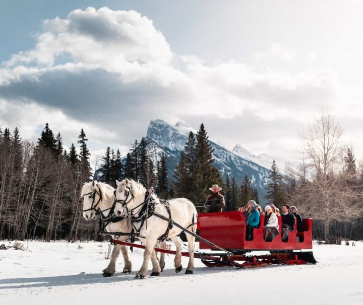 Banff snowy sleigh ride