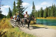 Bow River Ride Horseback Banff Trail Riders