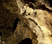 Canmore Cave Tour Explorer Tour The Grand Gallery