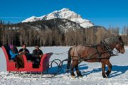 Celebrate your special moment with sparkling wine on a private sleigh ride