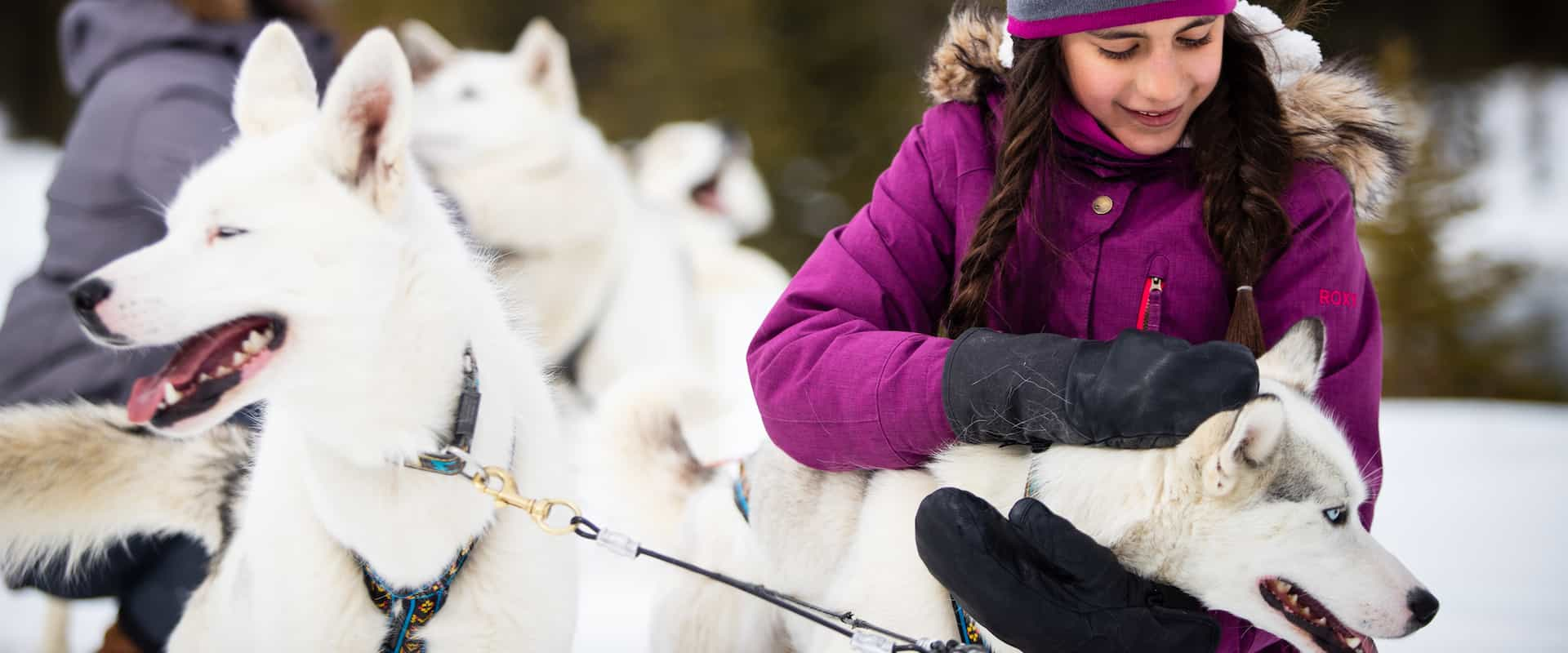 Children petting dogs on a Canmore dogsledding tour near Banff