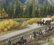 Cowboy Cookout Horseback Ride Banff Trail Riders