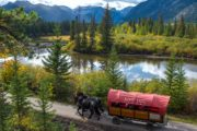 Cowboy Cookout Ride along the Bow River