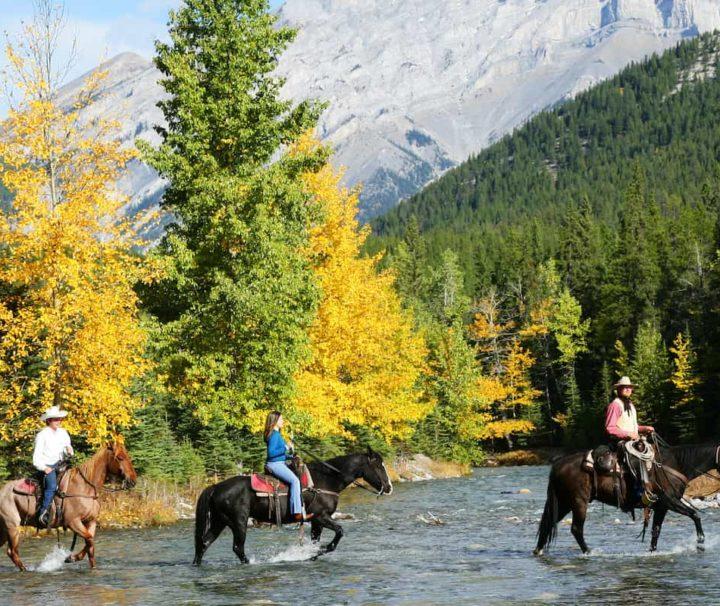 Cross the Spray River on the Sulphur Mountain Ride