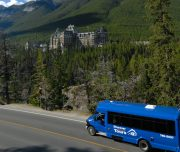 Discover Banff And Its Wildlife Banff Springs Hotel