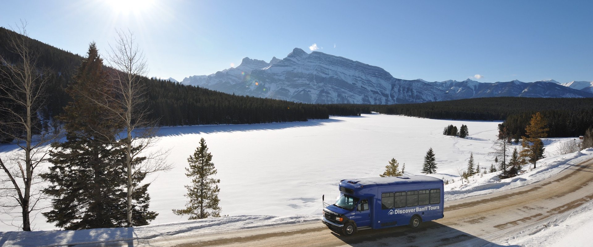 Discover Banff & Its Wildlife