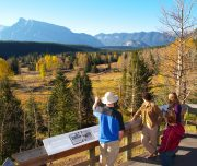 Discover Banff and Its Wildlife Bankhead