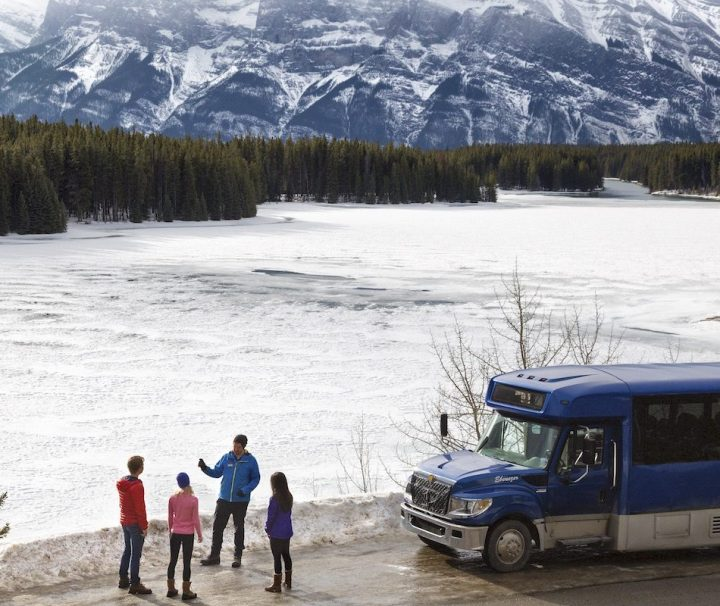 Discover Banff and Its Wildlife with Discover Banff Tours