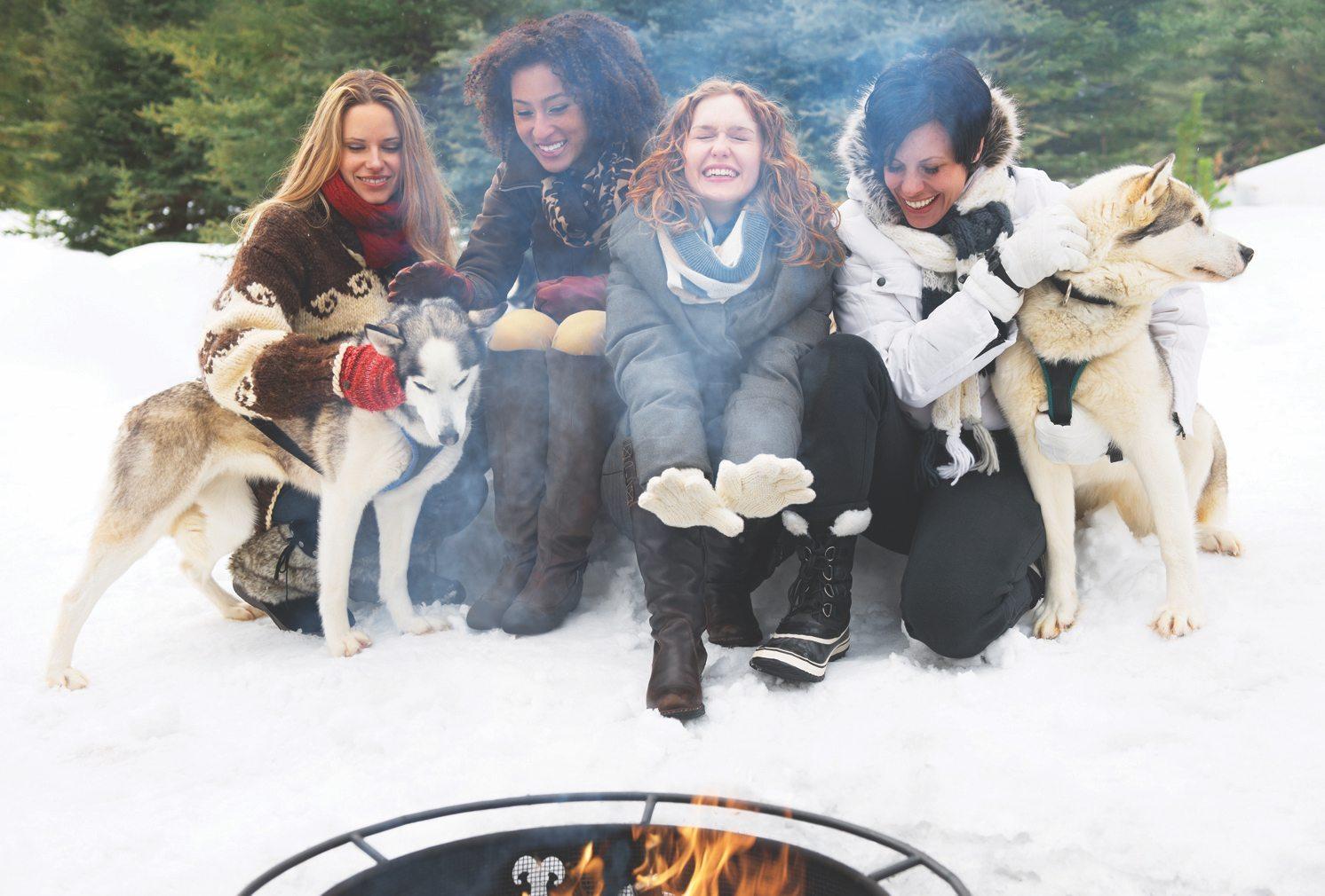Dogsled Tour in Spray Lakes, Alberta
