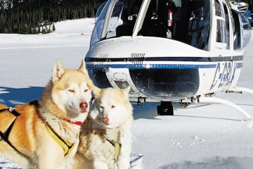 Dogsled and Heli Tour