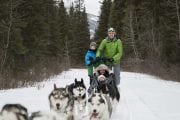 Drive your team of sled dogs on a dogsled adventure at Spray Lakes near Canmore in the Canadian Rockies