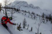Heliski in Panorama near Banff