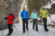 Hike on a frozen creek bed on the Grotto Canyon Icewalk with Discover Banff Tours