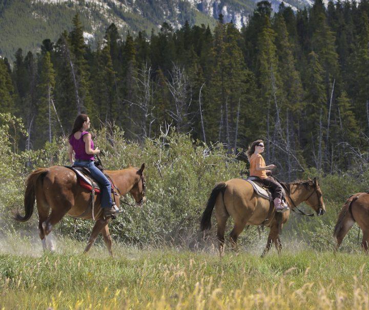 Horseback Rides in Banff