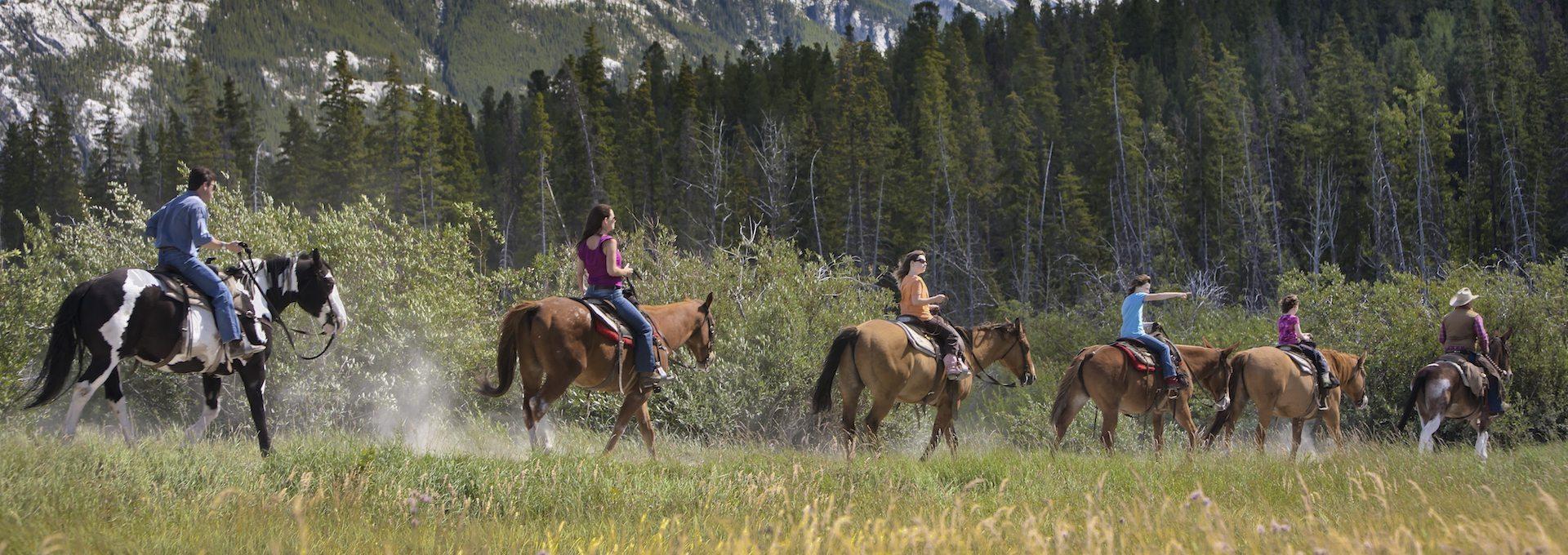 Horseback Ride – Bow Valley Loop 3 Hrs