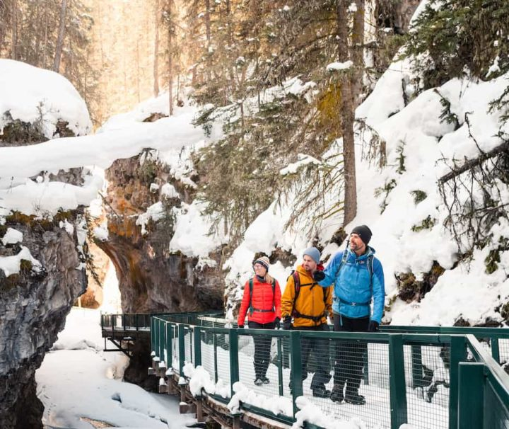 Johnston Canyon Icewalk in Banffwith Discover Banff Tours
