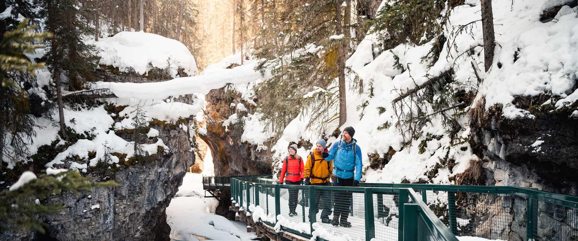 Johnston Canyon Icewalk®