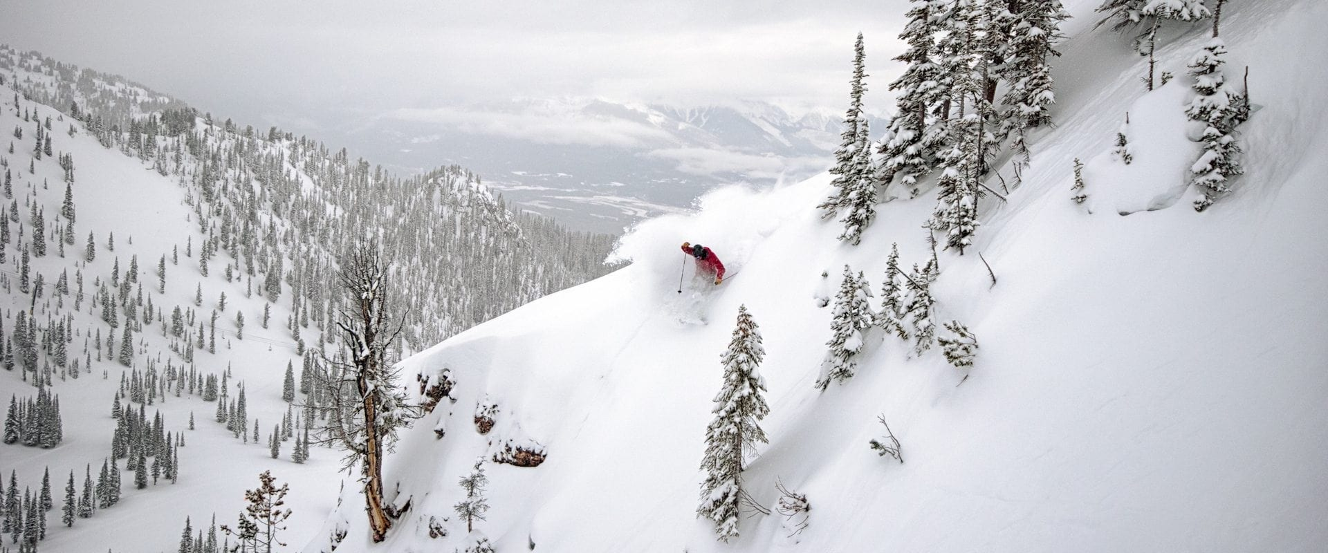 Kicking Horse Powder Express