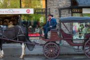Meet at The Trail Rider Store for your Banff carriage ride