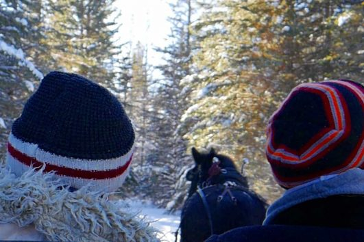 Private Banff sleigh ride with Discover Banff Tours in the Canadian Rockies