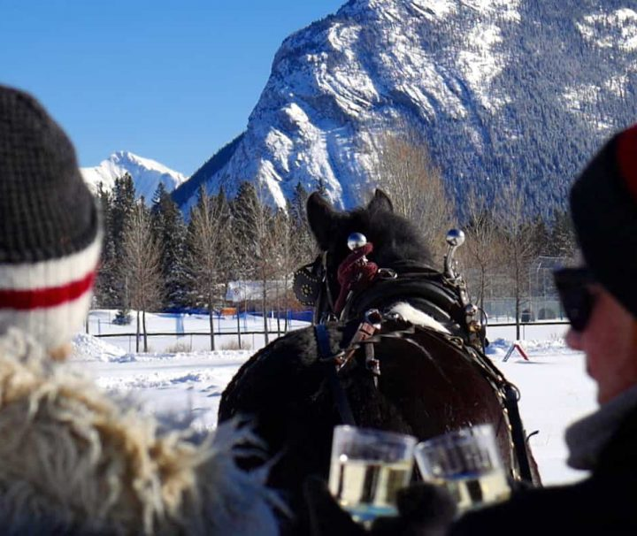 Private Banff sleigh ride with sparkling wine with Discover Banff Tours in the Canadian Rockies