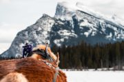 Rundle Mountain private sleigh ride