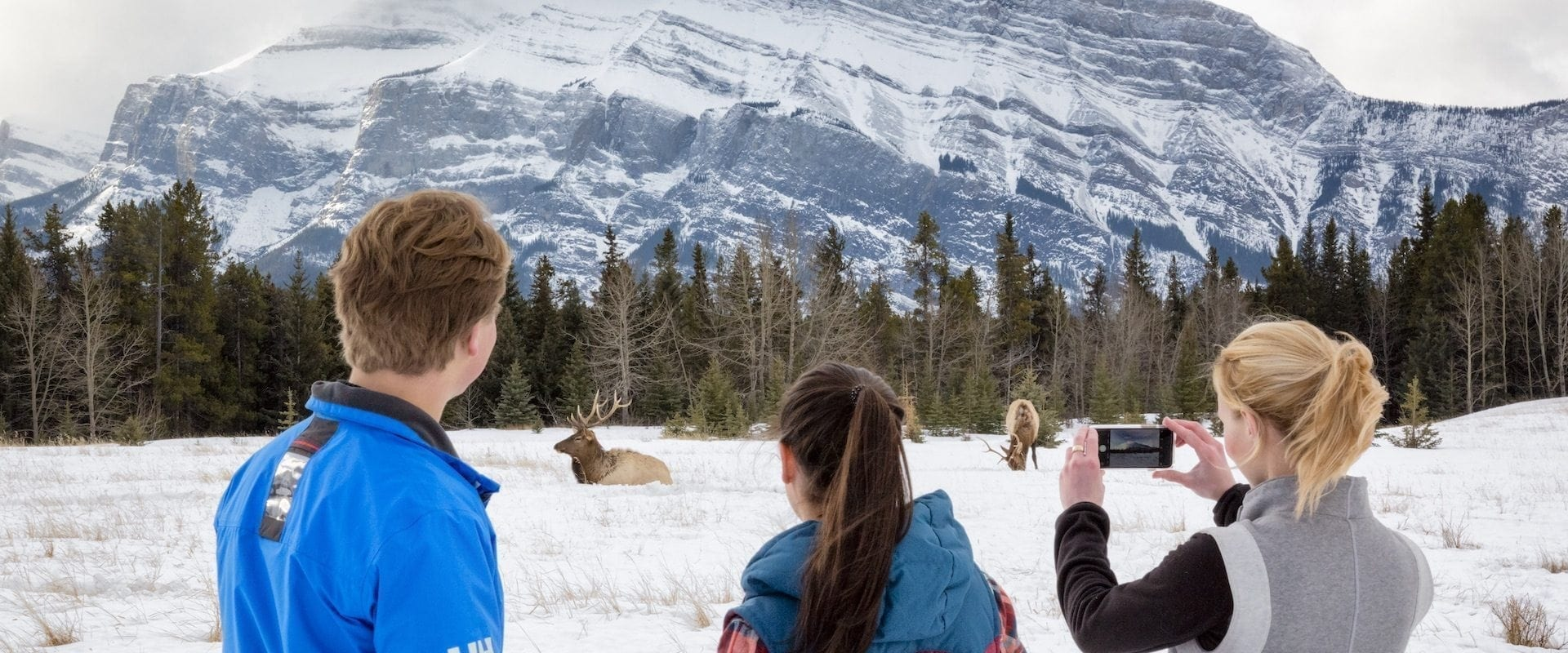 Banff Tour + Afternoon Icewalk