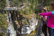 See Maligne Canyon on the Maligne Valley Sightseeing Tour in Jasper