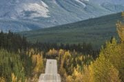 See fall colours along the Bow Valley Parkway in Banff with Discover Banff Tours