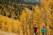 Banff sightseeing