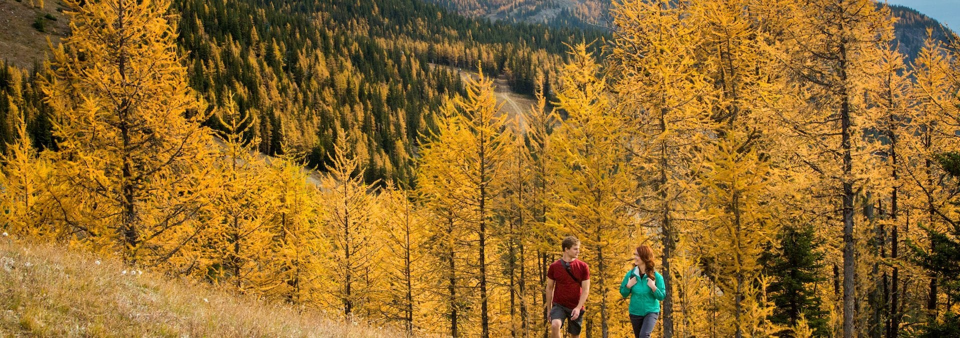 Discover Banff & Lake Louise – Fall Colours