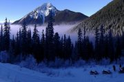 Experience a full day snowmobiling adventure with Discover Banff Tours in the Canadian Rockies