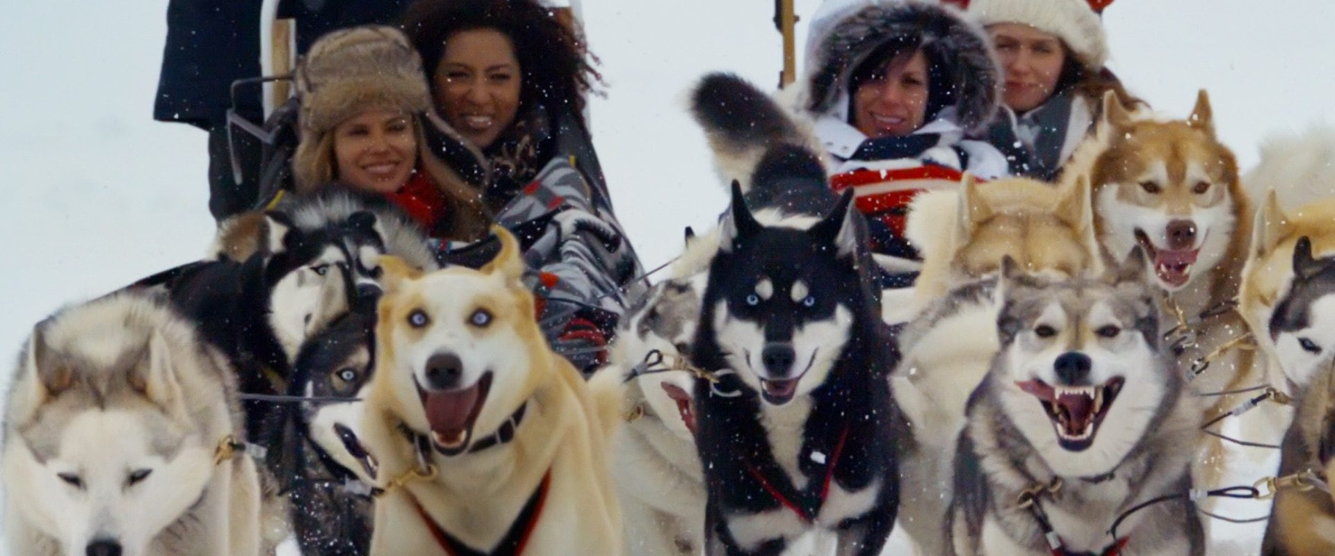 Dogsledding – Sunfeather Winterlude 4 Hrs