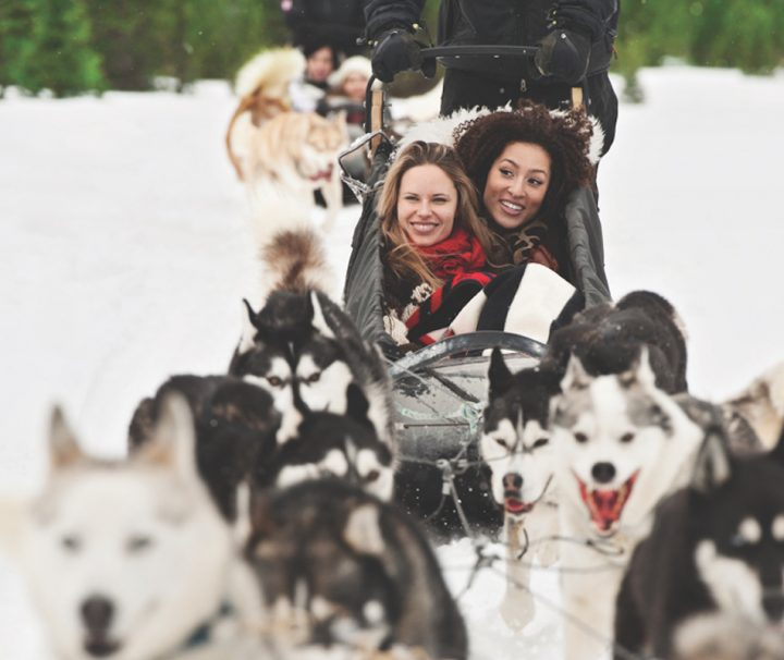 Dogsled Tour in Spray Lakes, Alberta