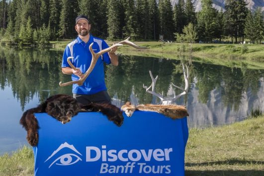 Evening Wildlife Safari with Discover Banff Tours
