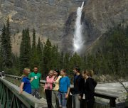 Takakkaw Falls on the Discover Grizzly Bear Tour