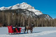 Take a private sleigh ride through the mountain meadows in Banff