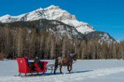 Take a private sleigh ride through the mountain meadows in Banff