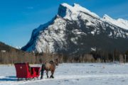 Take in mountain views from your private winter sleigh ride