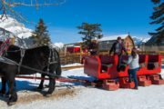 The steps make it easy to board the winter sleigh