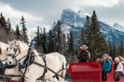 Winter sleigh ride in Banff