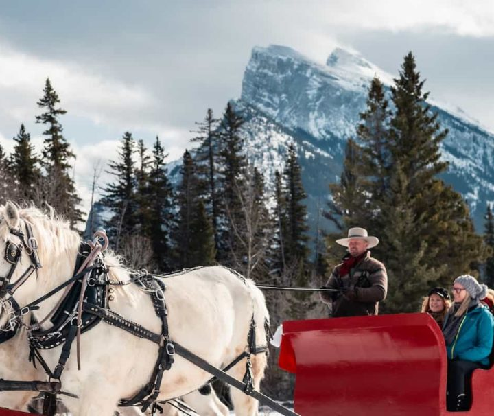 Winter sleigh ride in Banff