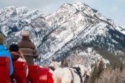 Winter sleigh ride views in Banff