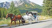 Banff Carriage Rides