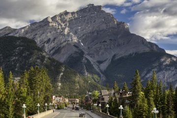 Discover Banff and It's Wildlife