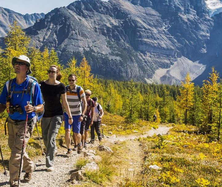 banff hiking discover banff tours