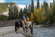 Horseback ride along the Spray River