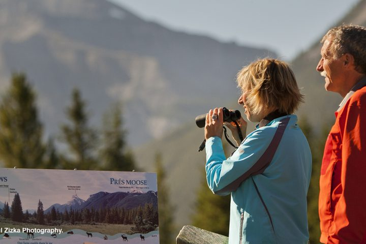 Sightseeing Tours in Banff